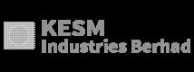 DR YIELD Customer Logo KESM Industries